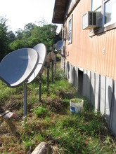 A line of satellite dish antennas installed behind a house.